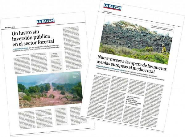 """AAEF reclama el inicio de las licitaciones públicas en el sector forestal tras años de """"sequía"""" inversora"""
