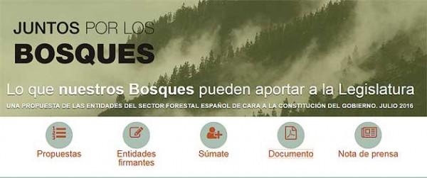 El sector forestal español se une ante la nueva legislatura
