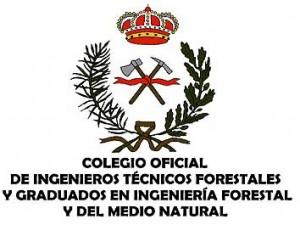 logo-COITF